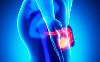 Боль в паху отдает в ногу — главная причина и как вылечить