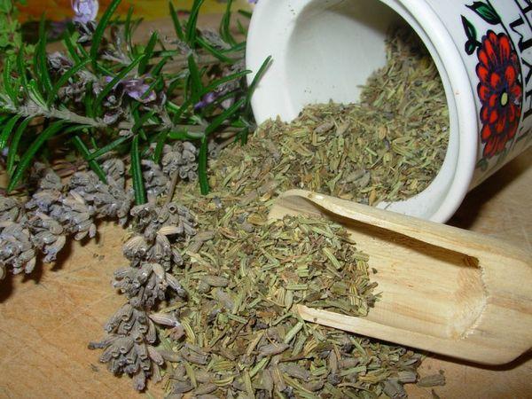 Настойка полыни от папиллом и бородавок - как использовать